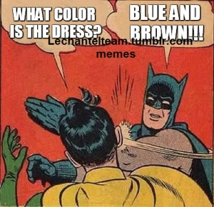 Batman what color is the dress lct